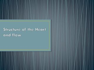 Structure of the Heart and flow