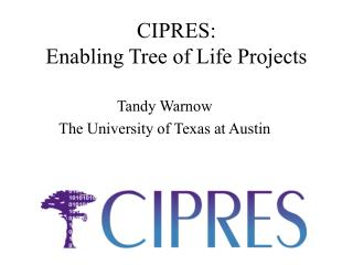 CIPRES:  Enabling Tree of Life Projects