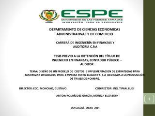 DEPARTAMENTO DE CIENCIAS ECONOMICAS ADMINISTRATIVAS Y DE COMERCIO