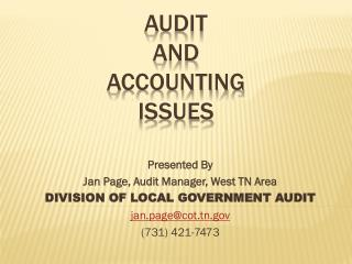 AUDIT  AND ACCOUNTING  ISSUES
