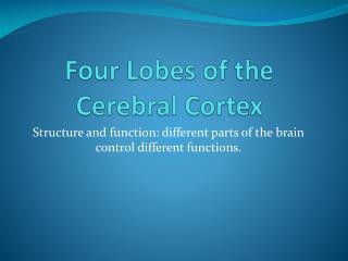Four Lobes of the Cerebral Cortex