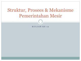 Struktur ,  Prosees  &  Mekanisme Pemerintahan Mesir