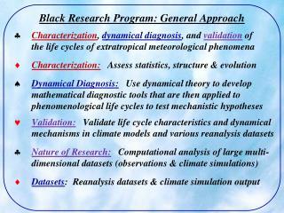 Black Research Program: General Approach