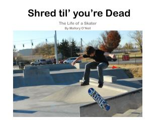 Shred  til ' you're Dead
