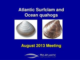 Atlantic Surfclam and  Ocean quahogs