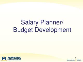 Salary Planner/  Budget Development