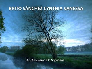 BRITO SÁNCHEZ CYNTHIA VANESSA