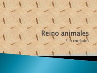 Reino animales