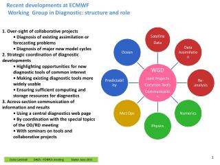 Recent developments  at ECMWF Working  Group in  Diagnostic: structure and role