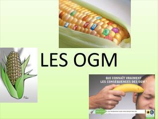 LES OGM
