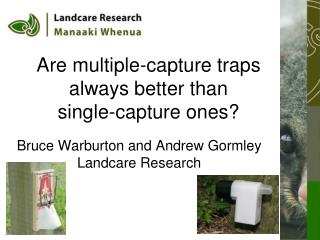 Are multiple-capture traps always better than single-capture ones?