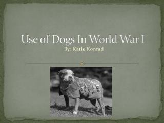 Use of Dogs In World War I