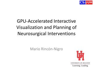 GPU-Accelerated Interactive Visualization and Planning of Neurosurgical Interventions