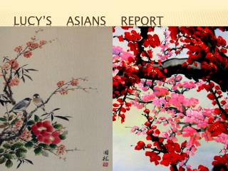 Lucy�s    Asians    Report