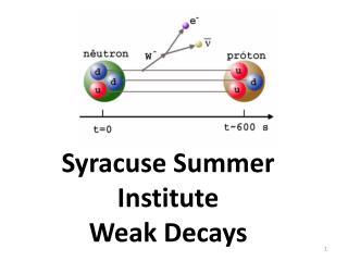 Syracuse Summer  Institute Weak Decays