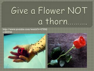 Give a Flower NOT a thorn……….