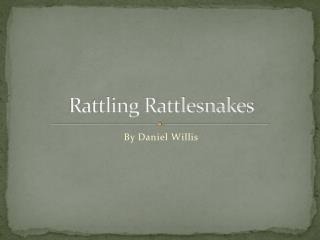 Rattling Rattlesnakes
