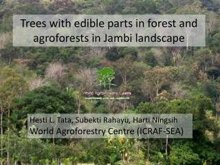 Trees with edible parts in forest and  agroforests  in Jambi landscape