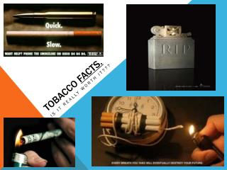 Tobacco  Facts.
