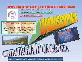 UNIVERSITA' DEGLI STUDI DI MESSINA