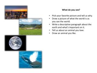 What do you see? Pick your favorite picture and tell us why.