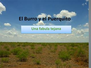 El Burro  y  el  Puerquito