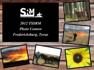 2012 TSSRM  Photo Contest Fredericksburg, Texas