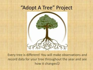 """Adopt A Tree"" Project"