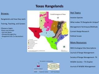 Texas Rangelands