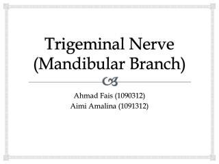 Trigeminal Nerve  (Mandibular Branch)