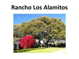Rancho Los Alamitos