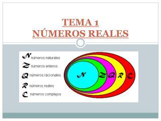 TEMA  1 N�MEROS REALES