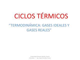 CICLOS TÉRMICOS