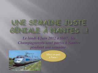 Une semaine juste géniale à Nantes …!