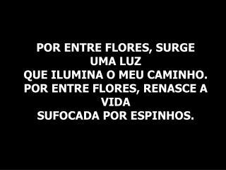 sublime amor flavinho canc3a7c3a3o nova1