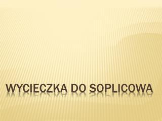 Wycieczka do  Soplicowa