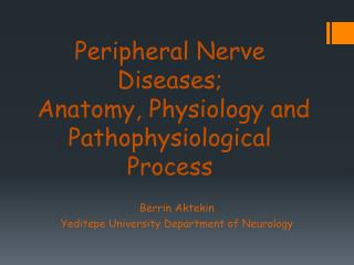 Peripheral Nerve Diseases;  Anatomy, Physiology and Pathophysiological Process