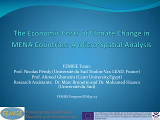 The Economic Costs of Climate Change in MENA Countries: A Micro-Spatial Analysis