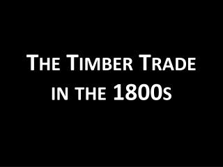 The Timber Trade in the 1800s