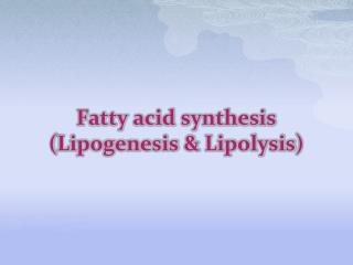 Fatty  acid  synthesis ( Lipogenesis  & Lipolysis )
