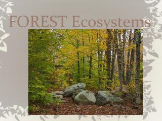 FOREST Ecosystems
