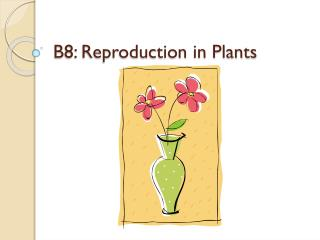B8: Reproduction in Plants