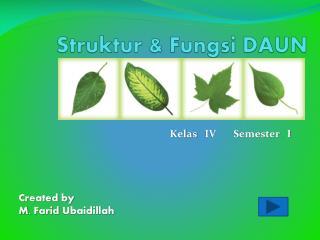 Struktur & Fungsi DAUN