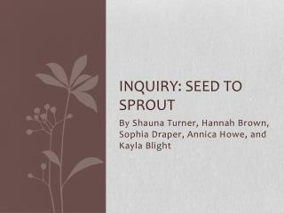 Inquiry: Seed to sprout