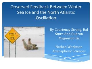 Observed Feedback Between Winter Sea Ice and the North Atlantic  Oscillation