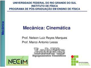 Prof. Nelson Luiz Reyes Marques Prof. Marco Antonio Lessa