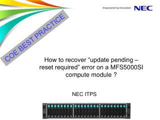 NEC  ITPS