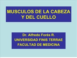 MUSCULOS DE LA CABEZA Y DEL CUELLO