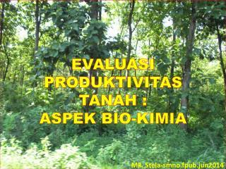 EVALUASI PRODUKTIVITAS  TANAH  : ASPEK BIO-KIMIA Mk.  Stela-smno.fpub.jun2014