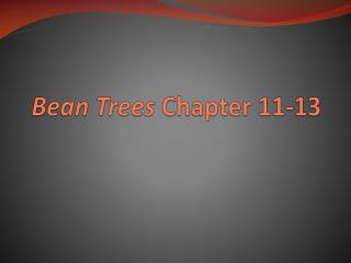 Bean Trees  Chapter 11-13